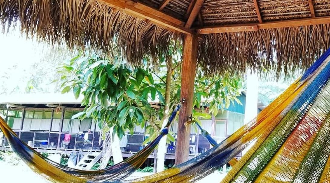 A hammock in Taricaya